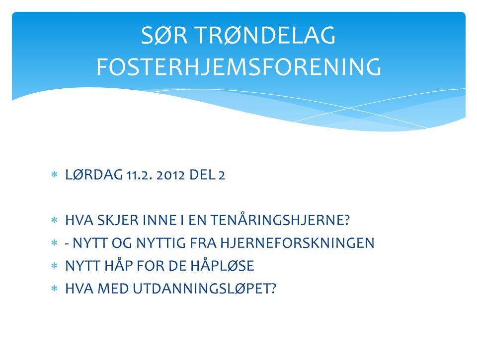  TERSKELPROBLEMATIKK  TILBAKEFØRING  FORBEDRINGSTILTAK  SAMVÆR DE VANSKELIGE PROBLEMSTILLINGENE