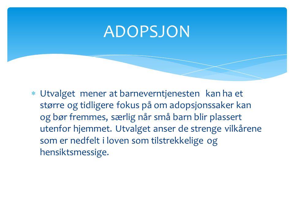  Utvalget mener at barneverntjenesten kan ha et større og tidligere fokus på om adopsjonssaker kan og bør fremmes, særlig når små barn blir plassert