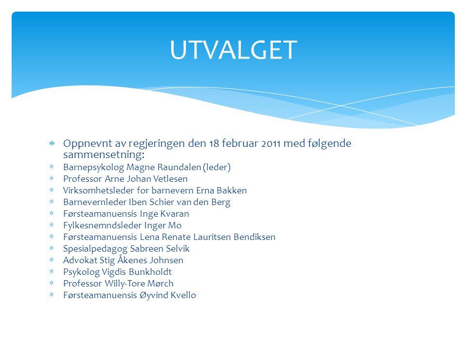  Oppnevnt av regjeringen den 18 februar 2011 med følgende sammensetning:  Barnepsykolog Magne Raundalen (leder)  Professor Arne Johan Vetlesen  Vi