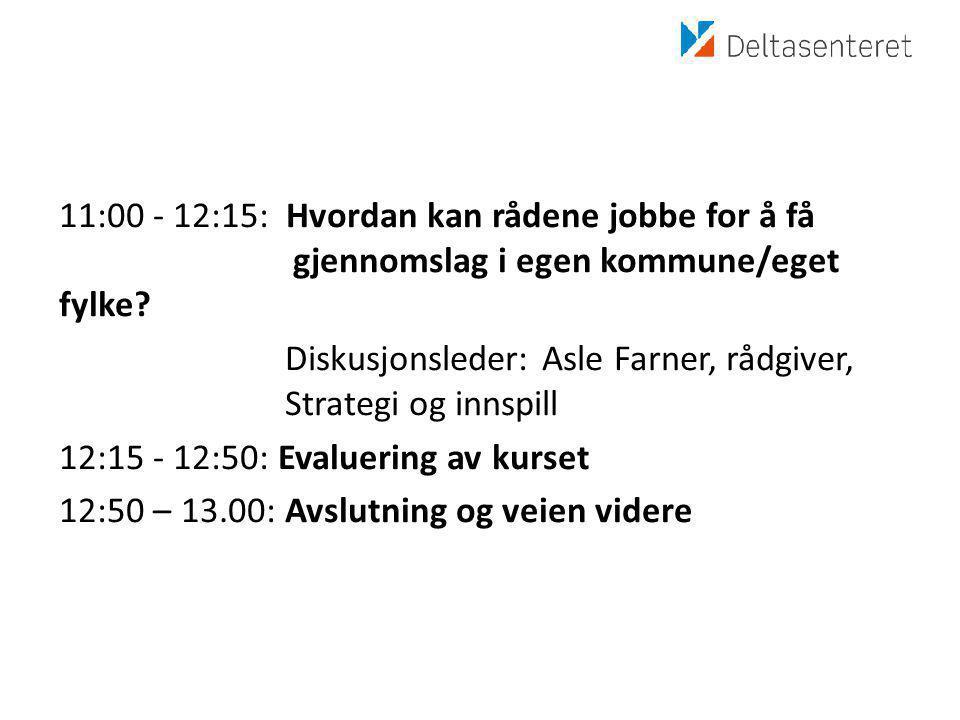 11:00 - 12:15: Hvordan kan rådene jobbe for å få gjennomslag i egen kommune/eget fylke.