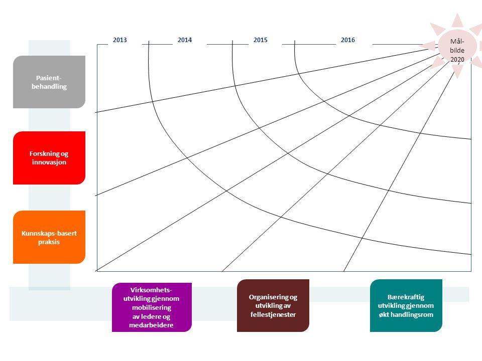 2016201320142015 Pasient- behandling Forskning og innovasjon Kunnskaps-basert praksis Virksomhets- utvikling gjennom mobilisering av ledere og medarbeidere Mål- bilde 2020 Organisering og utvikling av fellestjenester Bærekraftig utvikling gjennom økt handlingsrom
