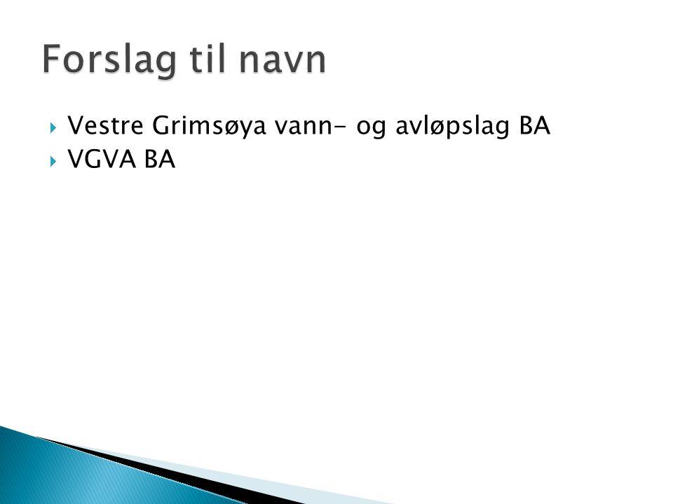  Vestre Grimsøya vann- og avløpslag BA  VGVA BA