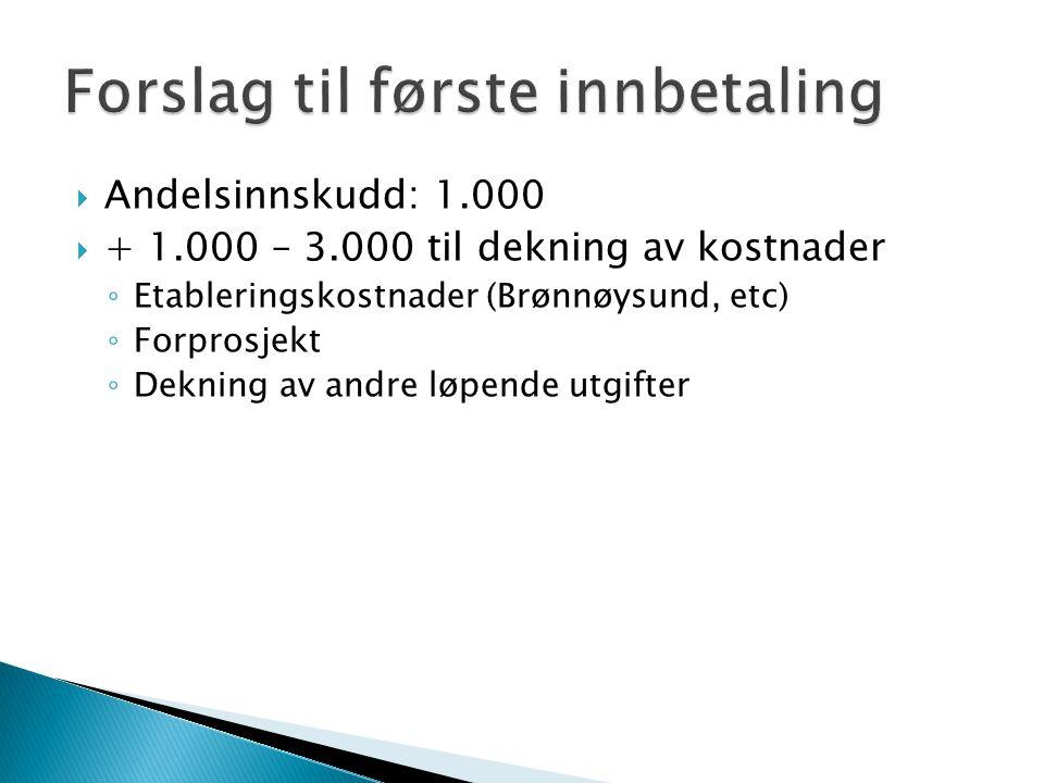  Andelsinnskudd: 1.000  + 1.000 – 3.000 til dekning av kostnader ◦ Etableringskostnader (Brønnøysund, etc) ◦ Forprosjekt ◦ Dekning av andre løpende