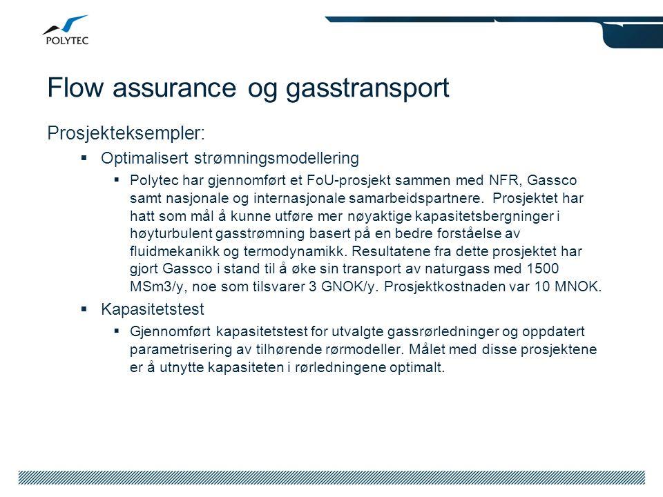 Flow assurance og gasstransport Prosjekteksempler:  Optimalisert strømningsmodellering  Polytec har gjennomført et FoU-prosjekt sammen med NFR, Gass