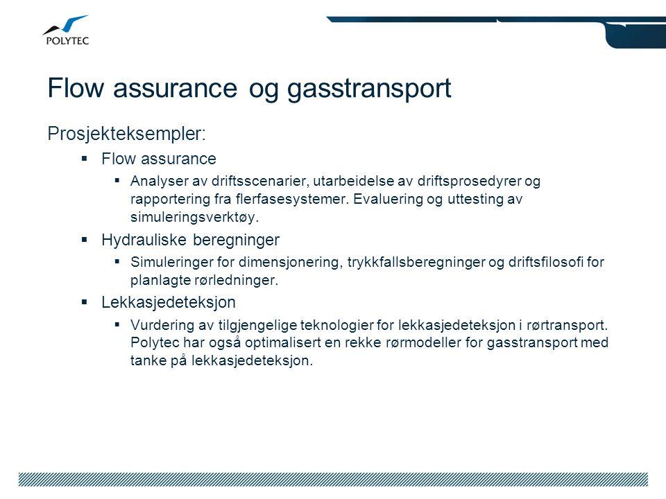 Flow assurance og gasstransport Prosjekteksempler:  Flow assurance  Analyser av driftsscenarier, utarbeidelse av driftsprosedyrer og rapportering fr