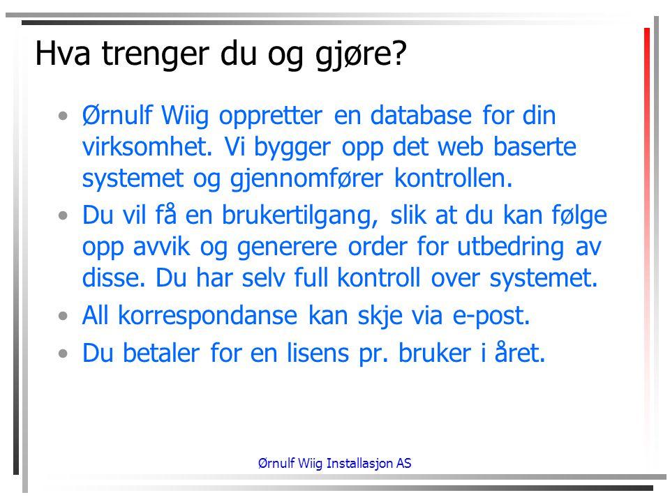 Hva trenger du og gjøre.•Ørnulf Wiig oppretter en database for din virksomhet.