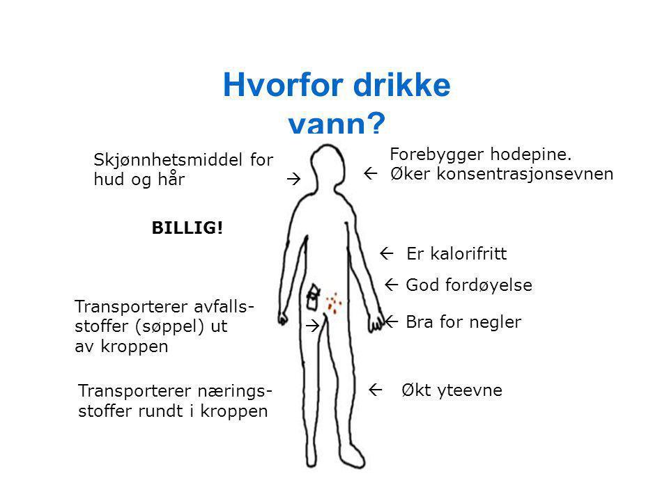 Hvorfor drikke vann? Skjønnhetsmiddel for hud og hår  Forebygger hodepine.  Øker konsentrasjonsevnen  Økt yteevne  Er kalorifritt  God fordøyelse