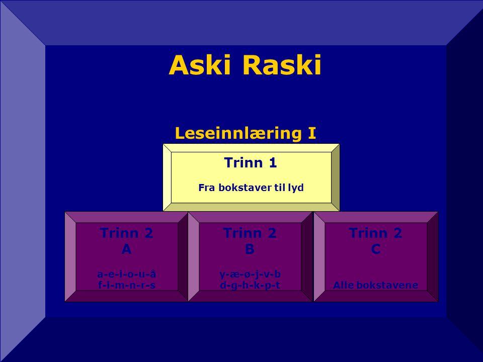Aski Raski Leseinnlæring I 12 Trinn 2 A a-e-i-o-u-å f-l-m-n-r-s Trinn 2 C Alle bokstavene Trinn 2 B y-æ-ø-j-v-b d-g-h-k-p-t Trinn 1 Fra bokstaver til lyd