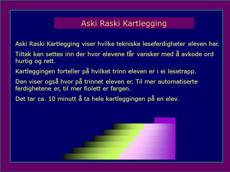 Aski Raski Kartlegging viser hvilke tekniske leseferdigheter eleven har.