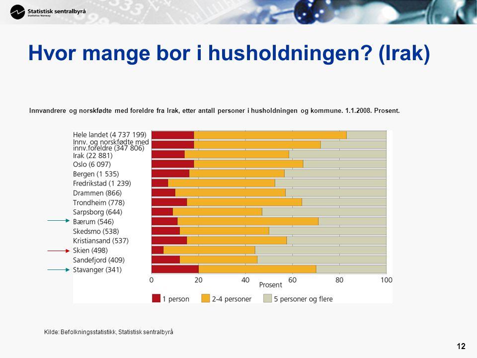 12 Hvor mange bor i husholdningen? (Irak) Innvandrere og norskfødte med foreldre fra Irak, etter antall personer i husholdningen og kommune. 1.1.2008.