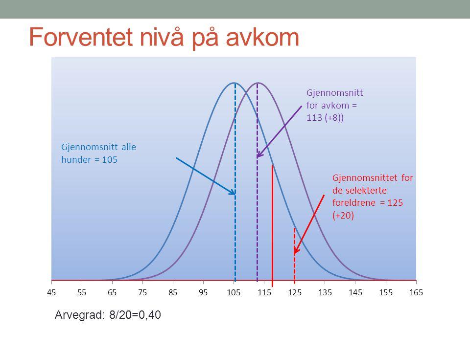 Forventet nivå på avkom Arvegrad: 8/20=0,40