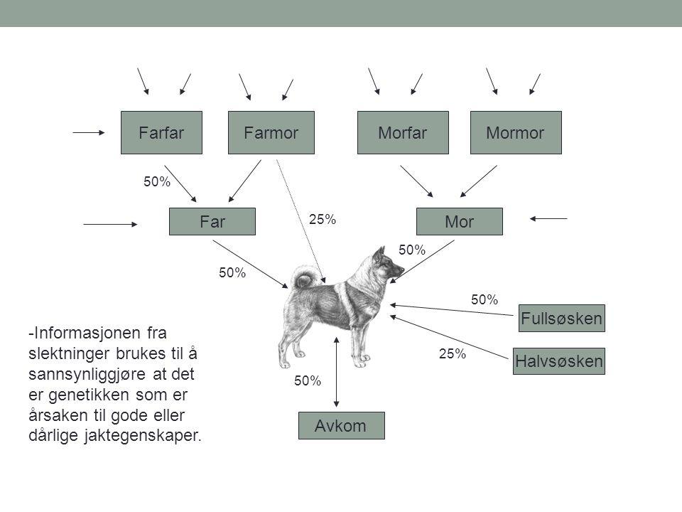 50% Far FarfarFarmorMormorMorfar Mor Halvsøsken Fullsøsken Avkom 50% 25% 50% 25% 50% -Informasjonen fra slektninger brukes til å sannsynliggjøre at de