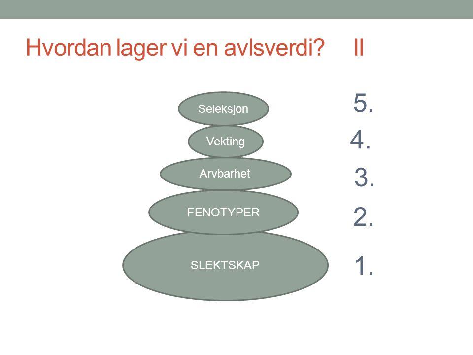 Hvordan lager vi en avlsverdi? II SLEKTSKAP FENOTYPER Arvbarhet Vekting Seleksjon 1. 2. 3. 4. 5.