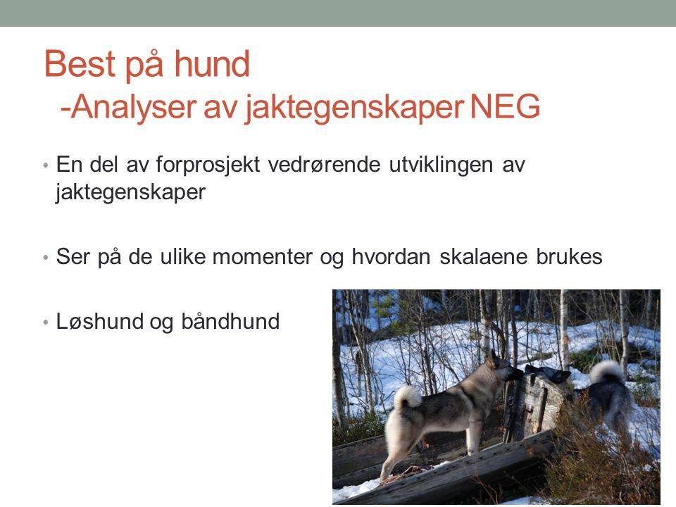Best på hund -Analyser av jaktegenskaper NEG • En del av forprosjekt vedrørende utviklingen av jaktegenskaper • Ser på de ulike momenter og hvordan sk