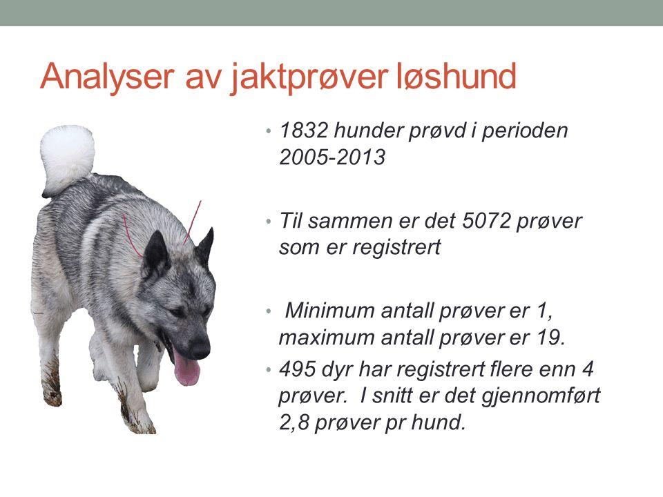 Analyser av jaktprøver løshund • 1832 hunder prøvd i perioden 2005-2013 • Til sammen er det 5072 prøver som er registrert • Minimum antall prøver er 1
