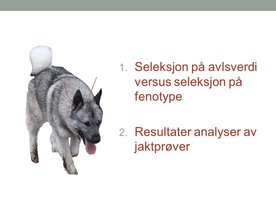 1. Seleksjon på avlsverdi versus seleksjon på fenotype 2. Resultater analyser av jaktprøver