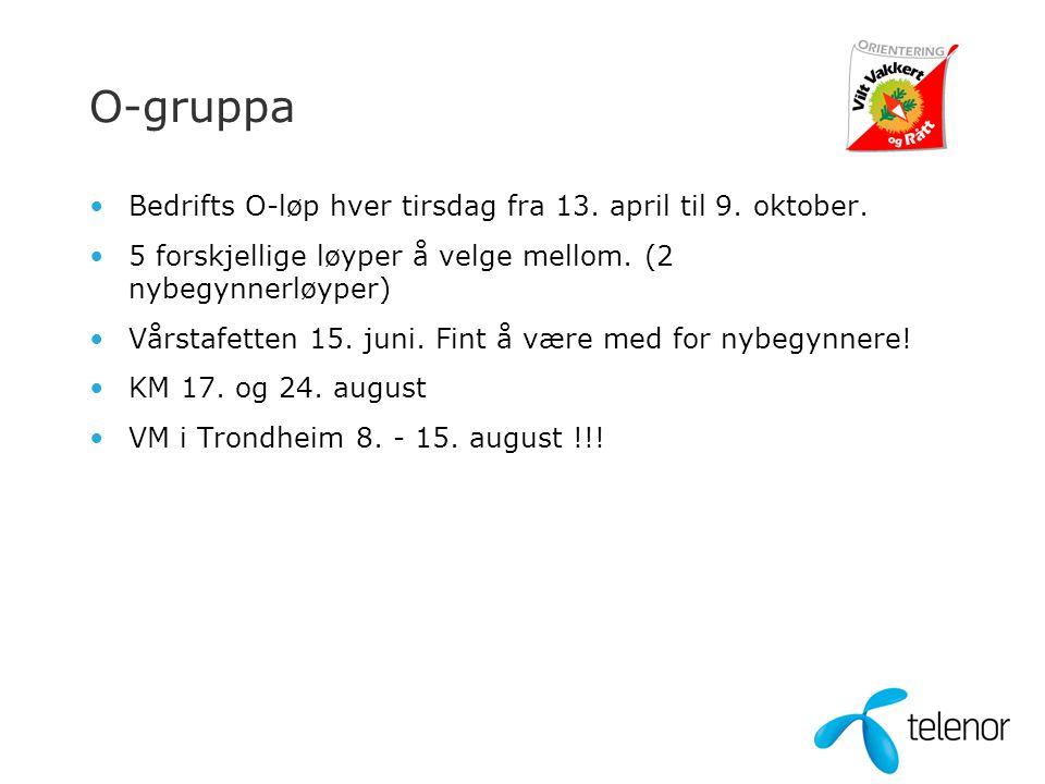 O-gruppa •Bedrifts O-løp hver tirsdag fra 13. april til 9. oktober. •5 forskjellige løyper å velge mellom. (2 nybegynnerløyper) •Vårstafetten 15. juni