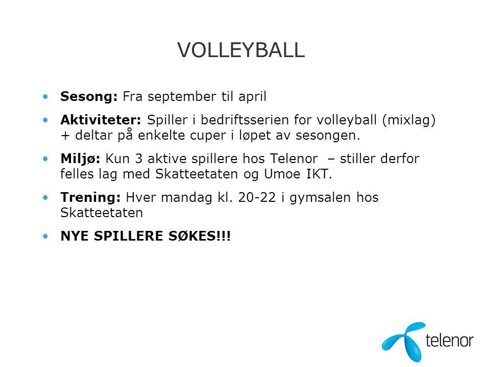VOLLEYBALL •Sesong: Fra september til april •Aktiviteter: Spiller i bedriftsserien for volleyball (mixlag) + deltar på enkelte cuper i løpet av sesongen.