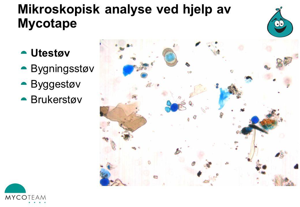 Mikroskopisk analyse ved hjelp av Mycotape  Utestøv  Bygningsstøv  Byggestøv  Brukerstøv