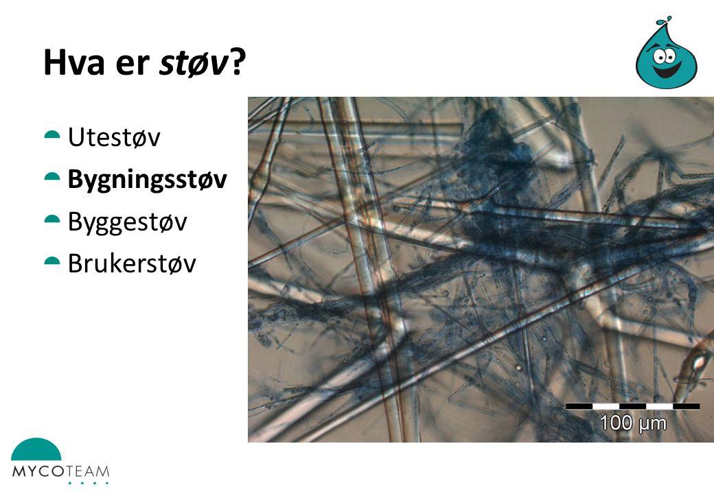 Hva er støv?  Utestøv  Bygningsstøv  Byggestøv  Brukerstøv