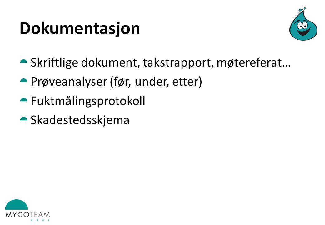 Dokumentasjon  Skriftlige dokument, takstrapport, møtereferat…  Prøveanalyser (før, under, etter)  Fuktmålingsprotokoll  Skadestedsskjema