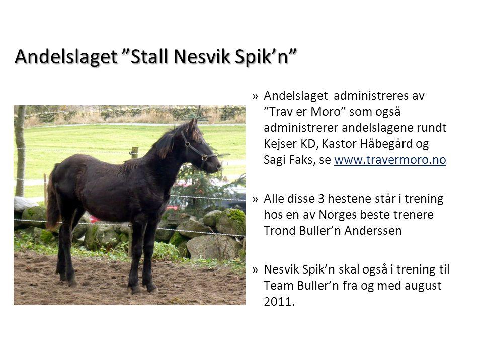 "Andelslaget ""Stall Nesvik Spik'n"" »Andelslaget administreres av ""Trav er Moro"" som også administrerer andelslagene rundt Kejser KD, Kastor Håbegård og"