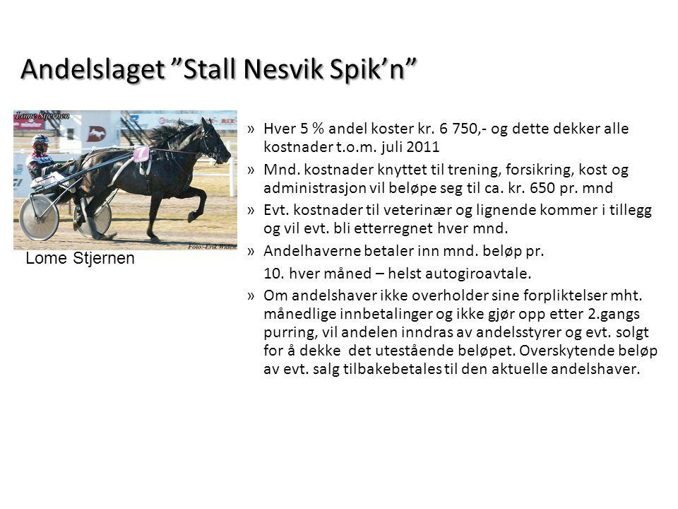 "Andelslaget ""Stall Nesvik Spik'n"" »Hver 5 % andel koster kr. 6 750,- og dette dekker alle kostnader t.o.m. juli 2011 »Mnd. kostnader knyttet til treni"