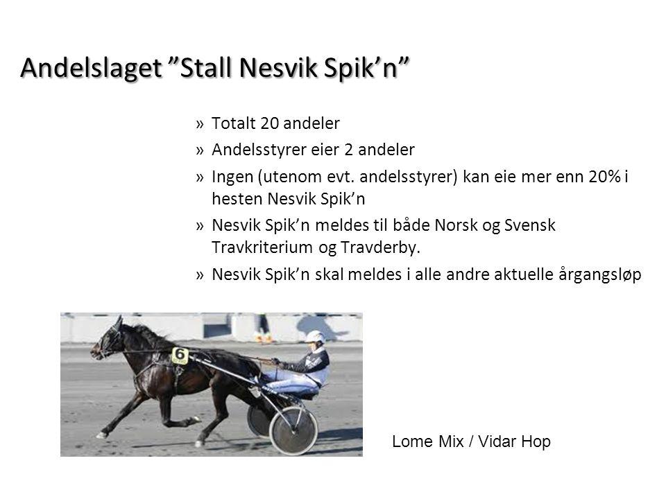 """Andelslaget """"Stall Nesvik Spik'n"""" »Totalt 20 andeler »Andelsstyrer eier 2 andeler »Ingen (utenom evt. andelsstyrer) kan eie mer enn 20% i hesten Nesvi"""