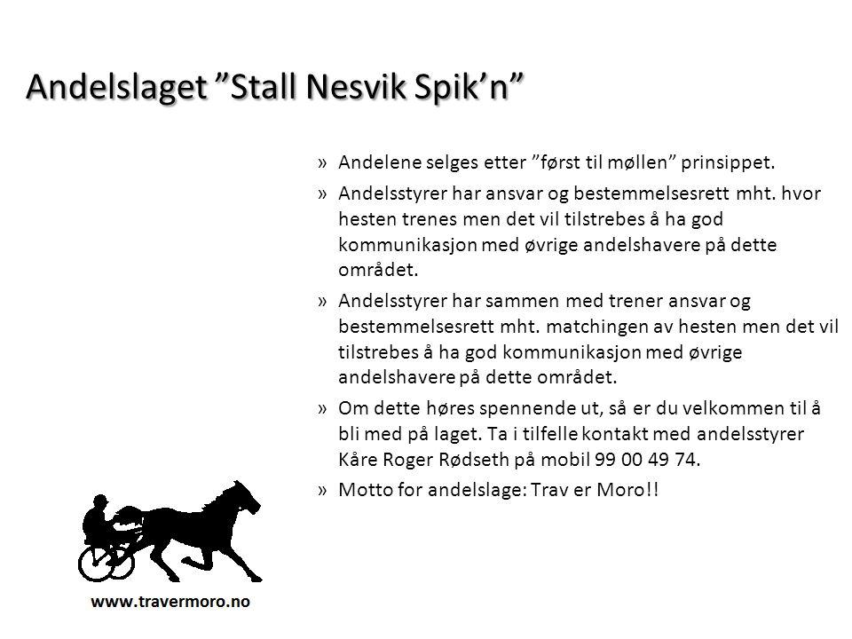 """Andelslaget """"Stall Nesvik Spik'n"""" »Andelene selges etter """"først til møllen"""" prinsippet. »Andelsstyrer har ansvar og bestemmelsesrett mht. hvor hesten"""