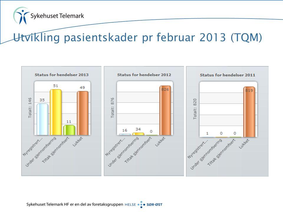 Utvikling pasientskader pr februar 2013 (TQM)