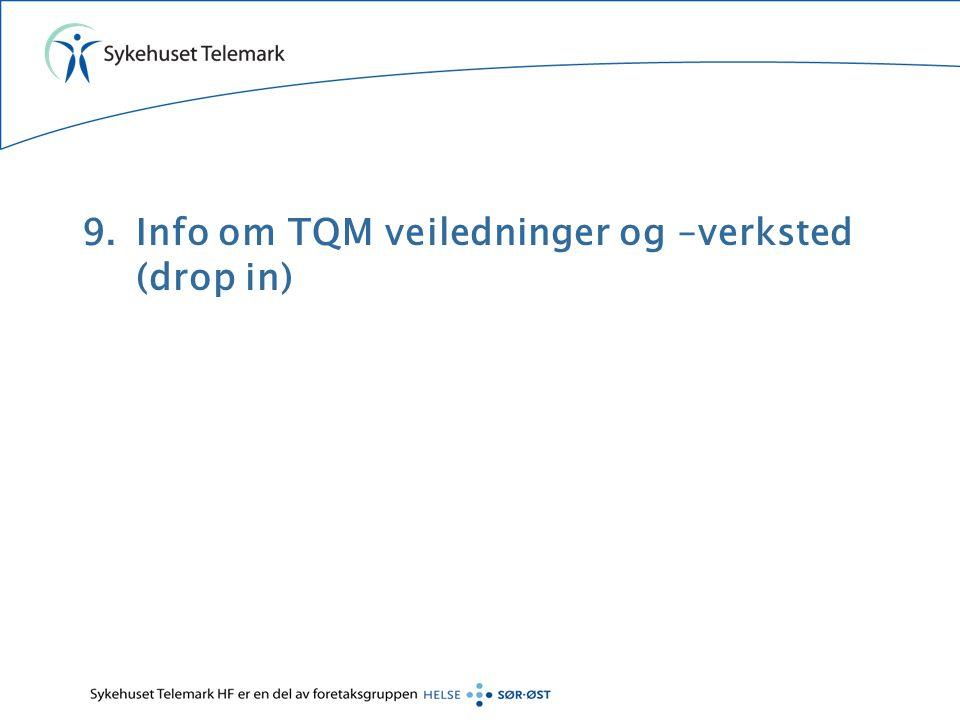 9.Info om TQM veiledninger og –verksted (drop in)