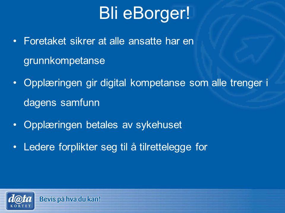 Bli eBorger! •Foretaket sikrer at alle ansatte har en grunnkompetanse •Opplæringen gir digital kompetanse som alle trenger i dagens samfunn •Opplæring