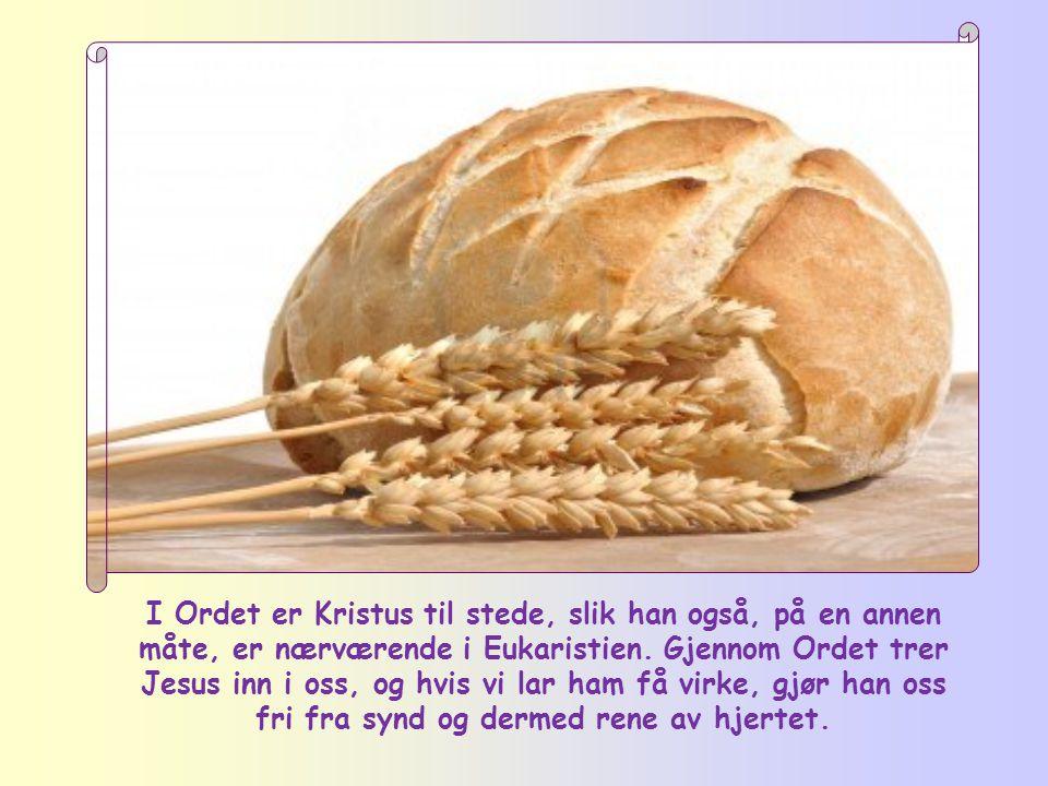 Det skjer ikke i de rituelle øvelsene for å rense sjelen, men gjennom Ordet. Jesu ord er ikke som menneskenes tale.