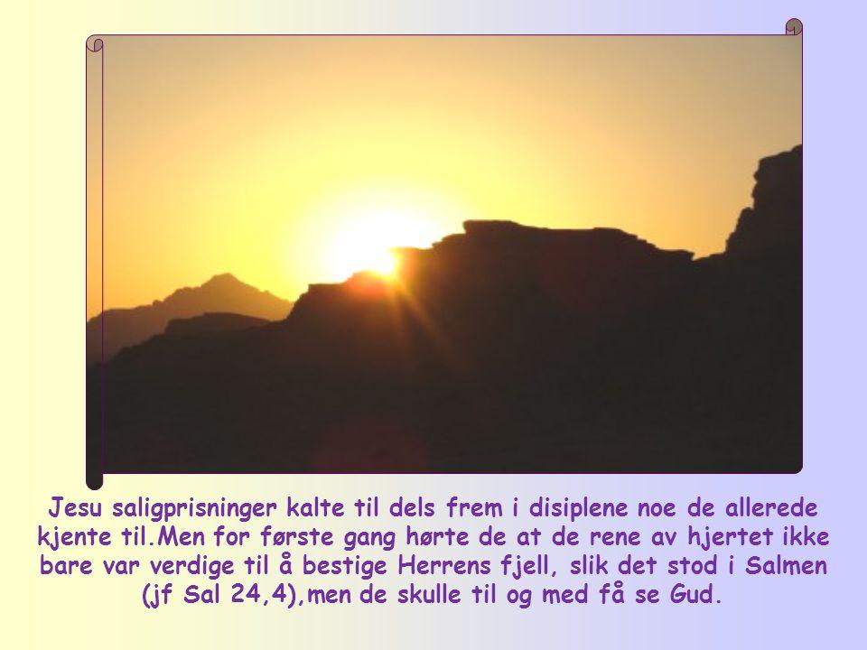 Jesu saligprisninger kalte til dels frem i disiplene noe de allerede kjente til.Men for første gang hørte de at de rene av hjertet ikke bare var verdige til å bestige Herrens fjell, slik det stod i Salmen (jf Sal 24,4),men de skulle til og med få se Gud.