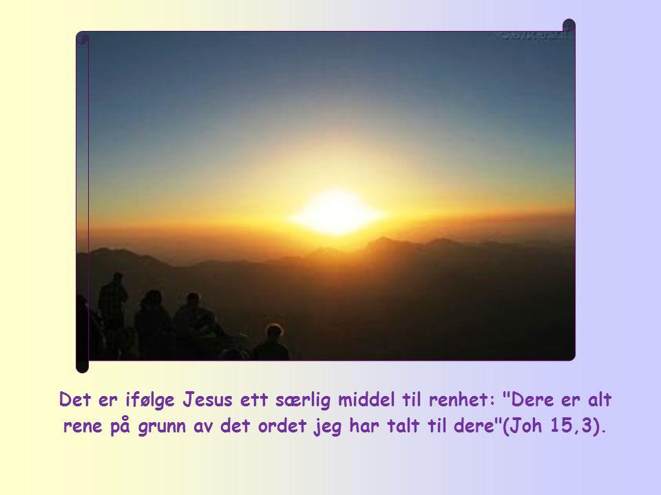 """""""Salige er de rene av hjertet, for de skal se Gud."""""""