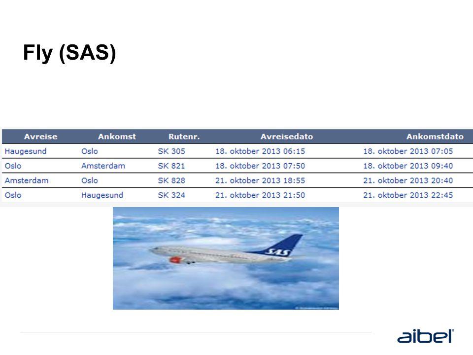 Fly (SAS)
