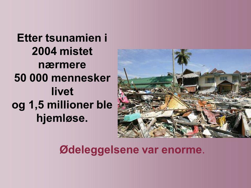 Etter tsunamien i 2004 mistet nærmere 50 000 mennesker livet og 1,5 millioner ble hjemløse.