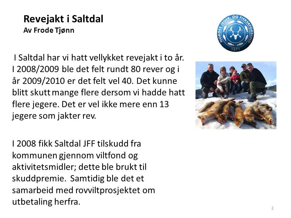 Revejakt i Saltdal Av Frode Tjønn I Saltdal har vi hatt vellykket revejakt i to år. I 2008/2009 ble det felt rundt 80 rever og i år 2009/2010 er det f