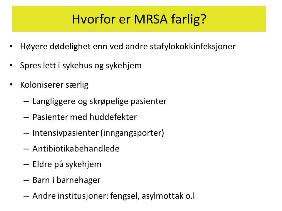 Hvorfor er MRSA farlig? • Høyere dødelighet enn ved andre stafylokokkinfeksjoner • Spres lett i sykehus og sykehjem • Koloniserer særlig – Langliggere