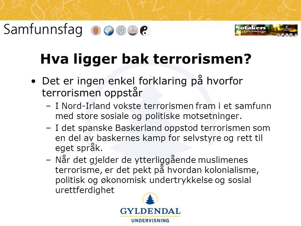 Hva ligger bak terrorismen.