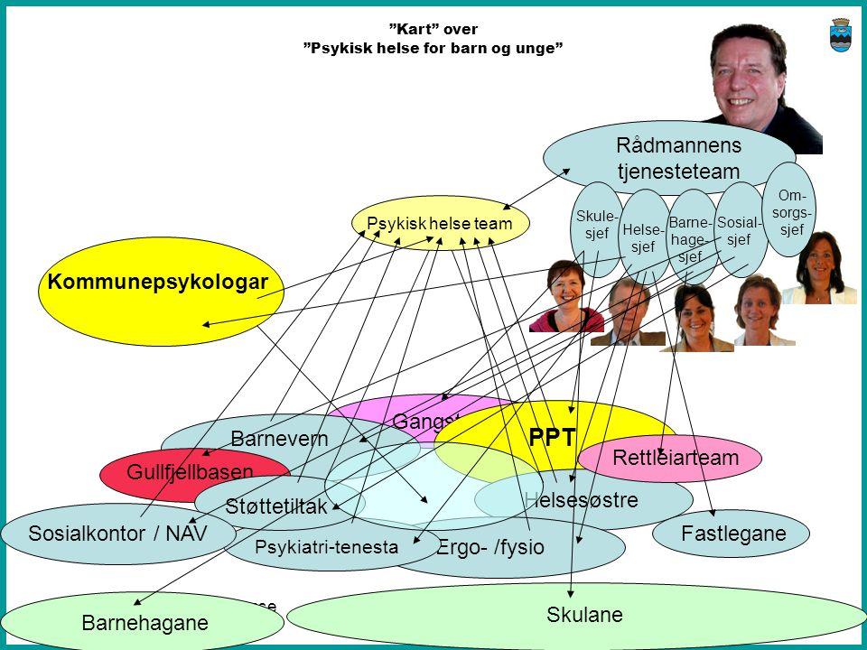 Nasjonal nettverkskonferanse 18. og 19. november 2010 Fjell kommune 2010 Gangstø Barnevern Gullfjellbasen PPT HelsesøstreErgo- /fysio Psykiatri-tenest