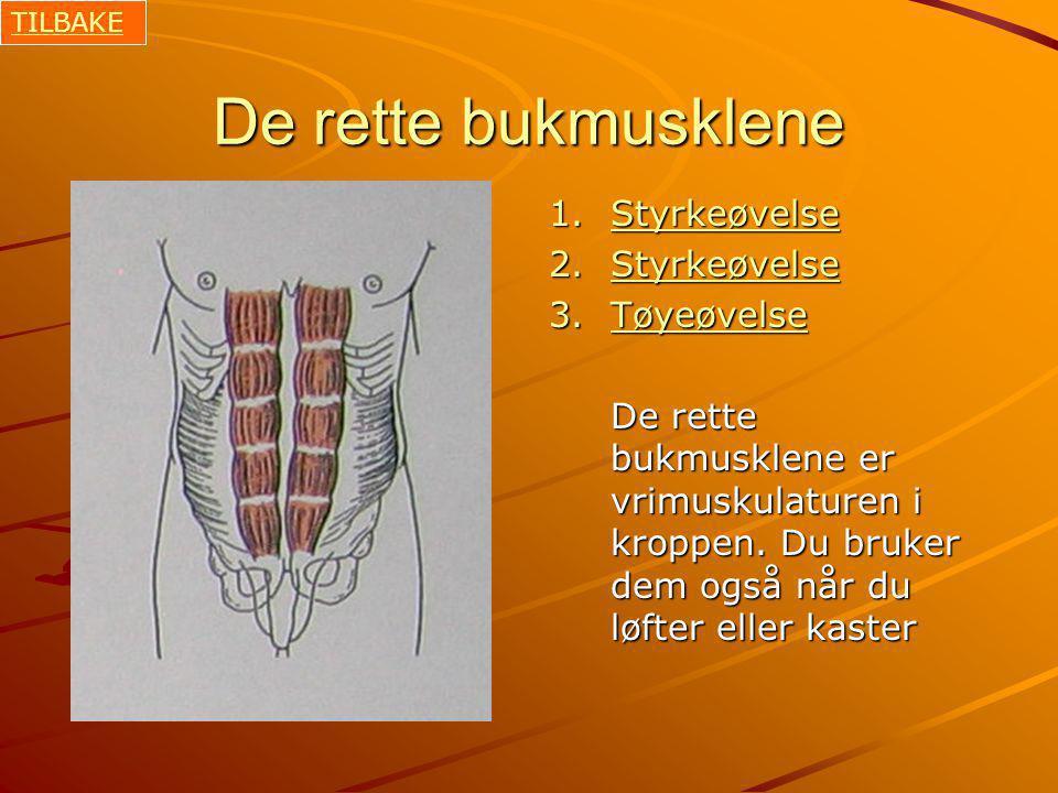 De rette bukmusklene 1.Styrkeøvelse Styrkeøvelse 2.Styrkeøvelse Styrkeøvelse 3.Tøyeøvelse Tøyeøvelse De rette bukmusklene er vrimuskulaturen i kroppen.