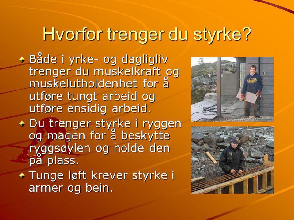 Armbøyerne 1.Styrkeøvelse Styrkeøvelse 2.Styrkeøvelse Styrkeøvelse 3.Tøyeøvelse Tøyeøvelse Armbøyerne bøyer albue- leddet.