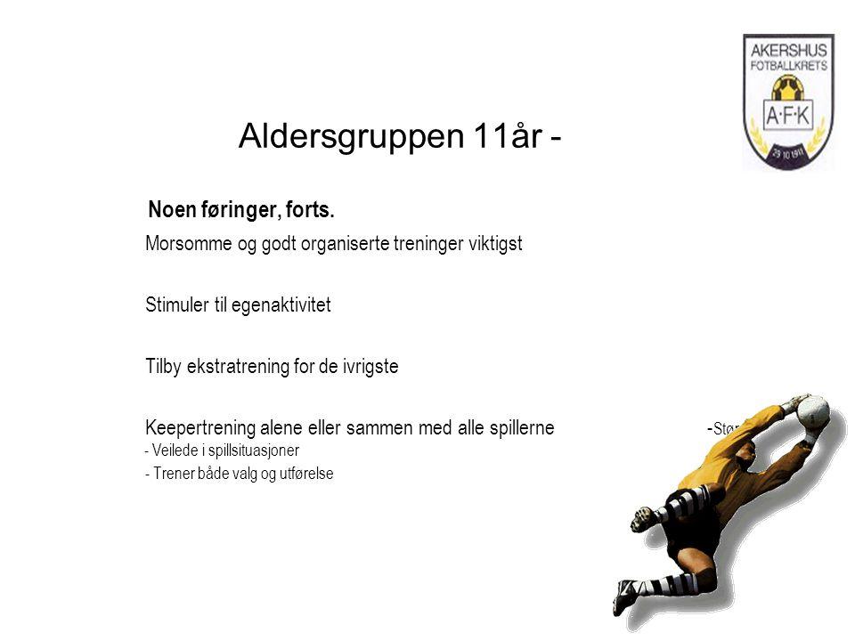Aldersgruppen 11år - Noen føringer, forts.