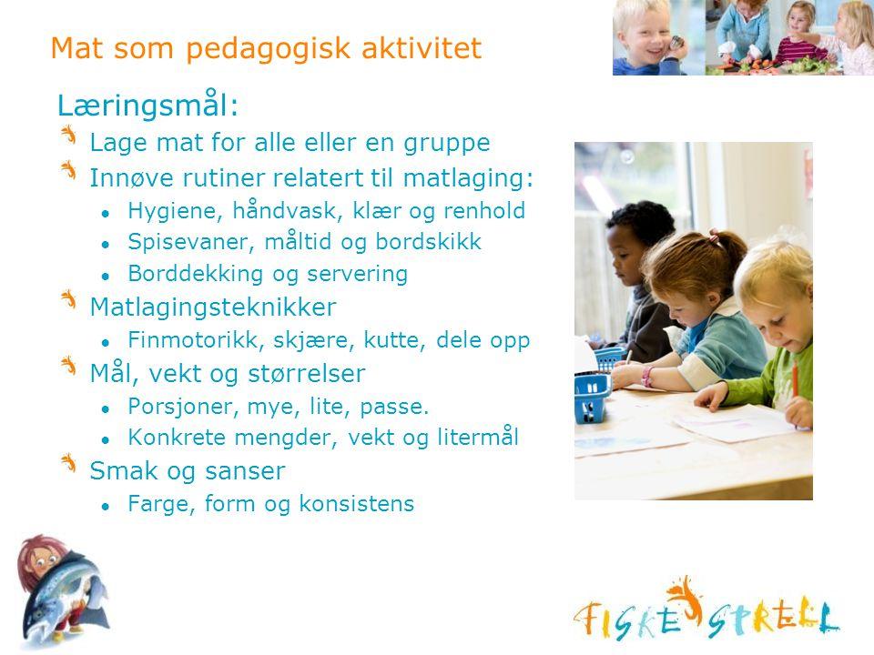 Mat som pedagogisk aktivitet Læringsmål: Lage mat for alle eller en gruppe Innøve rutiner relatert til matlaging: ● Hygiene, håndvask, klær og renhold