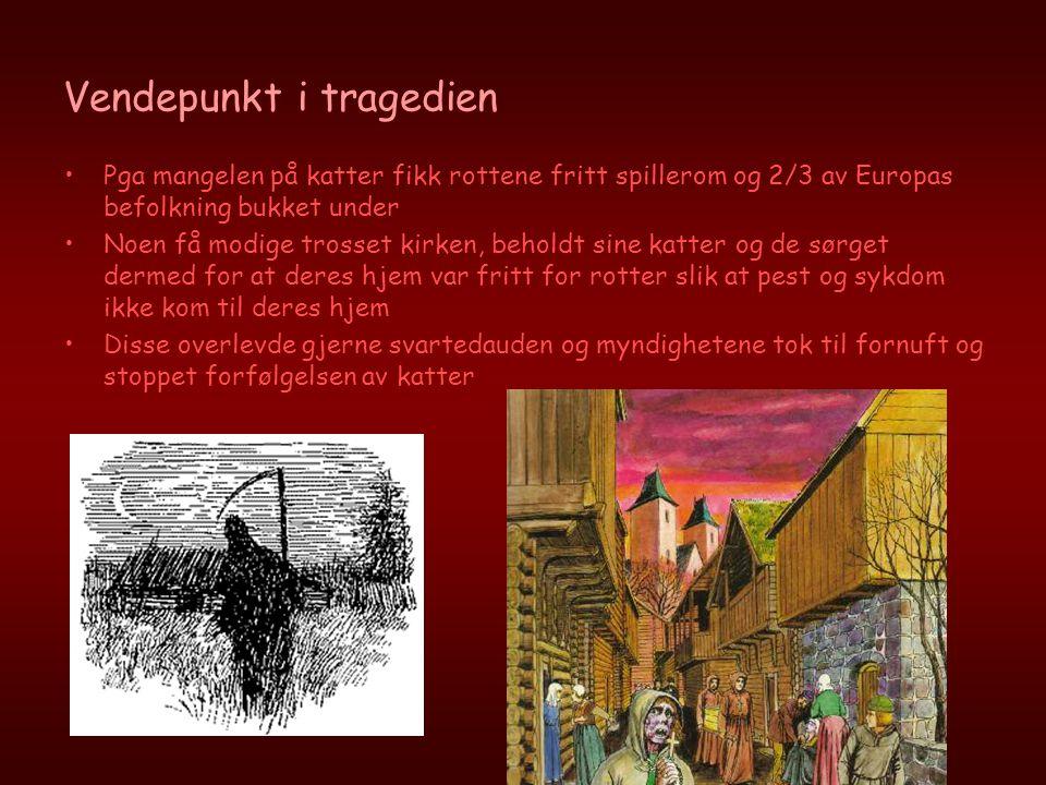 Vendepunkt i tragedien •Pga mangelen på katter fikk rottene fritt spillerom og 2/3 av Europas befolkning bukket under •Noen få modige trosset kirken,