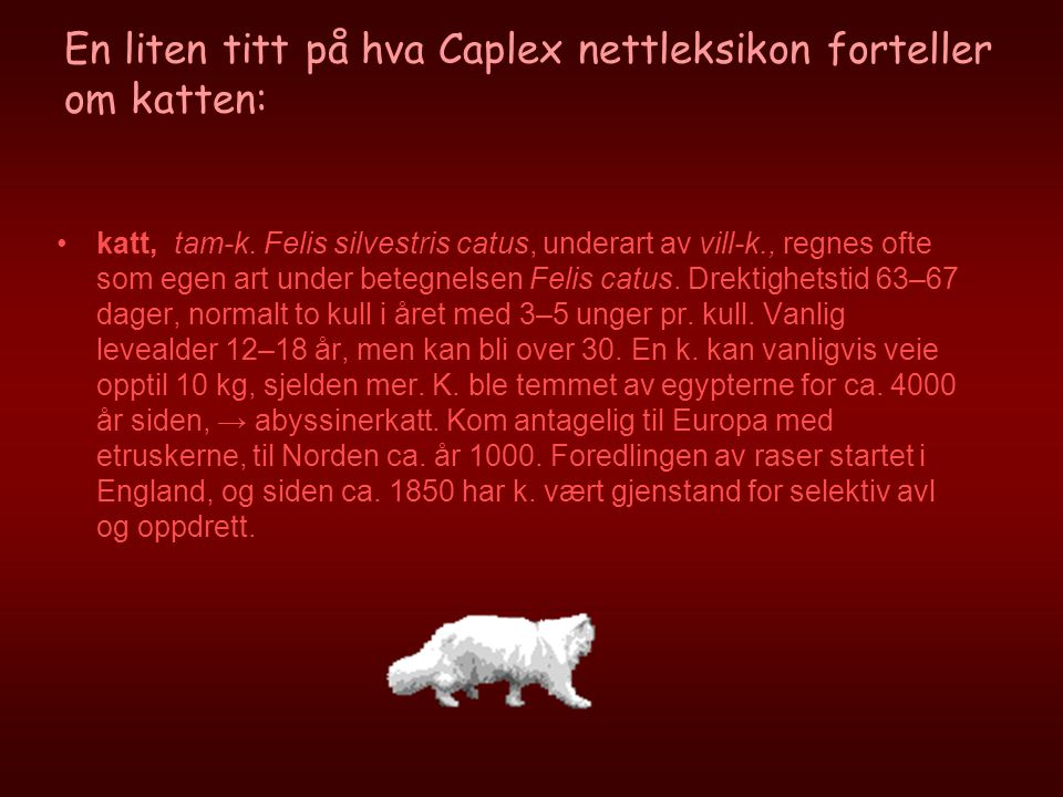 En liten titt på hva Caplex nettleksikon forteller om katten: •katt, tam-k. Felis silvestris catus, underart av vill-k., regnes ofte som egen art unde
