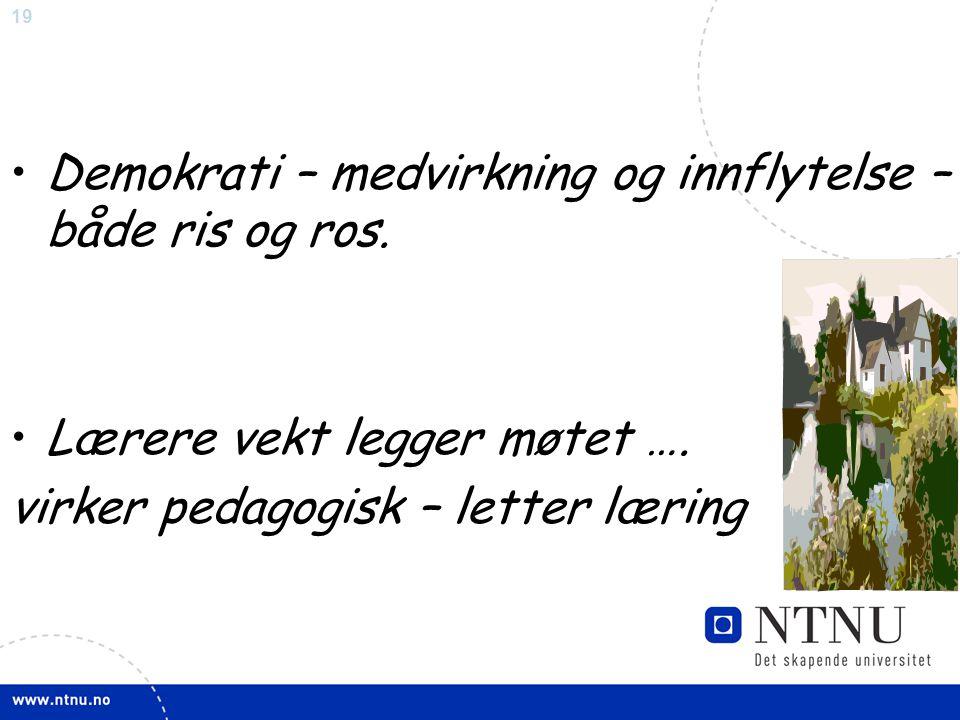 19 •Demokrati – medvirkning og innflytelse – både ris og ros. •Lærere vekt legger møtet …. virker pedagogisk – letter læring