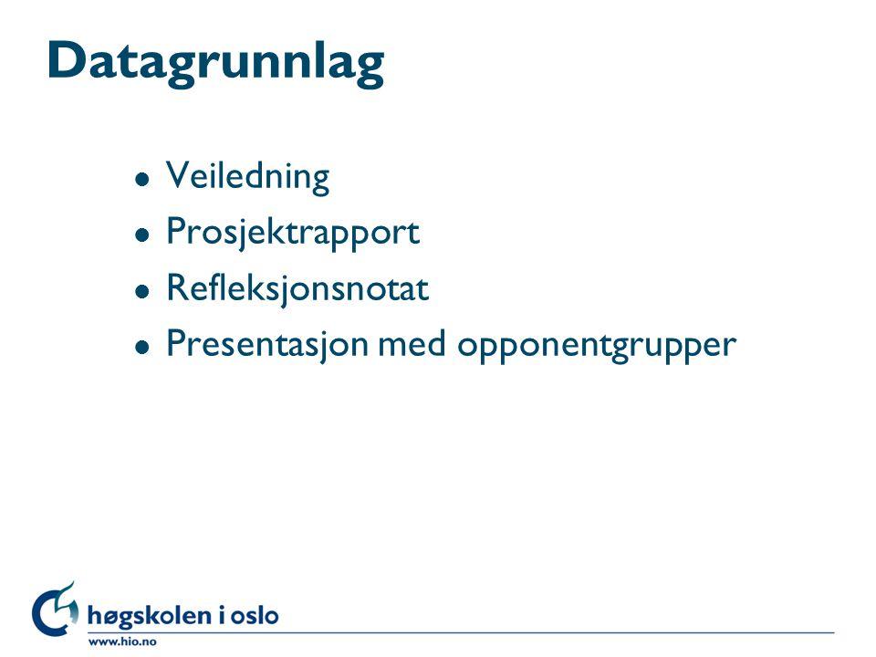 Datagrunnlag l Veiledning l Prosjektrapport l Refleksjonsnotat l Presentasjon med opponentgrupper