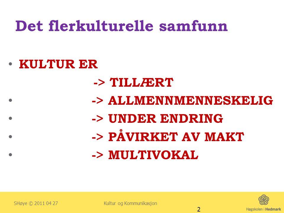 Erfaringer hos flerkulturelle familier (1) Høye & Severinsson (2010) I.C.C.N.